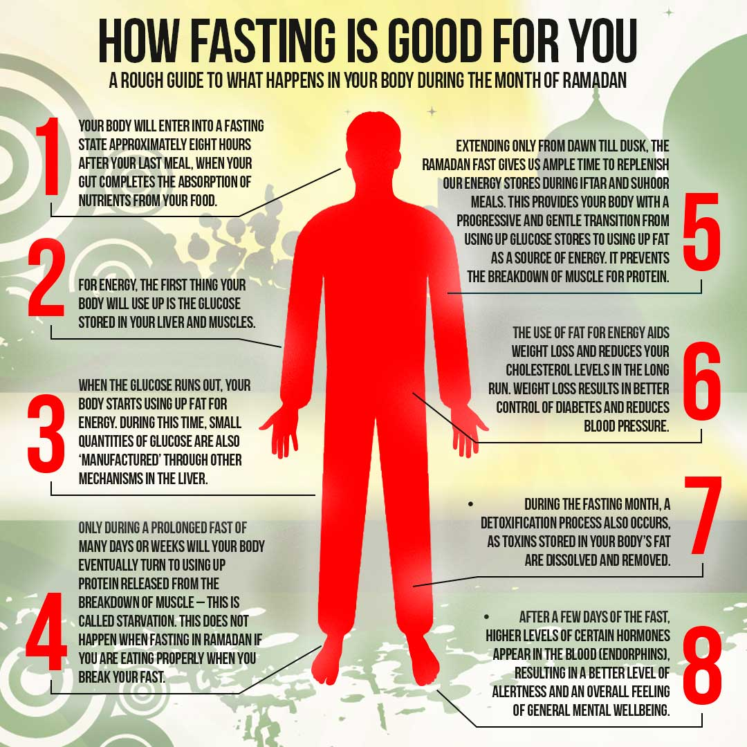 How Intermittent Fasting Benefits Your Health and Assists With Permanent Weight Loss images