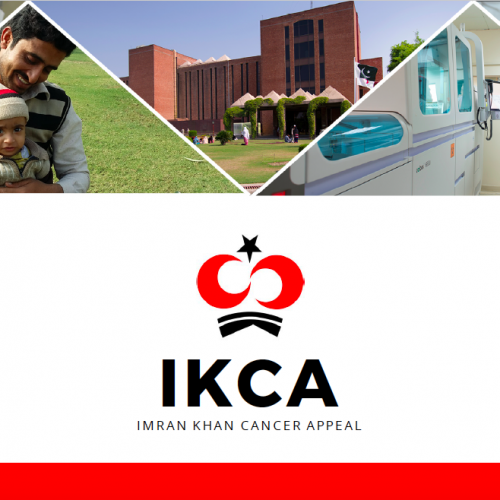 Download the IKCA 2017 Feedback Pdf