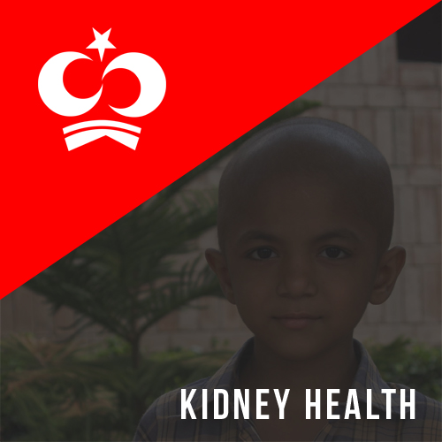 Kidney Health for Everyone Everywhere